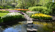 Landscaping with stone pathway and lake in Keukenhof, The Netherlands